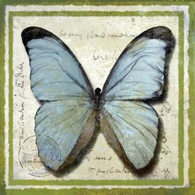 Karen J. Williams - Butterfly