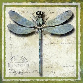 Karen J. Williams - Dragonfly
