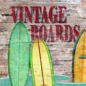 Karen J. Williams - Vintage Surf Boards