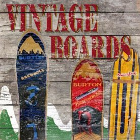 Karen J. Williams - Vintage Snow Boards