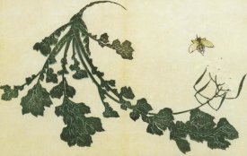 Hokusai - Radish And Bee 1814