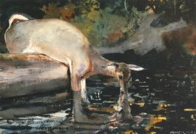 Winslow Homer - Deer Drinking