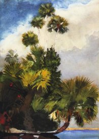 Winslow Homer - Palm Trees Florida