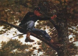 Winslow Homer - Sharpshooter
