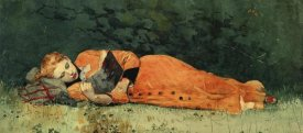 Winslow Homer - The New Novel
