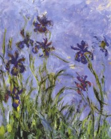 Claude Monet - Irises (detail)