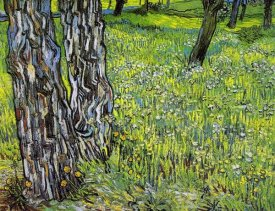 Vincent Van Gogh - Pine Trees And Dandelions In The Garden Of Saint Paul Hospital 1890