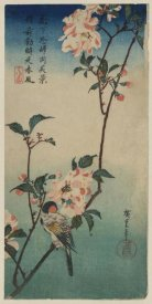 Ando Hiroshige - Small bird on a branch of Kaidozakura