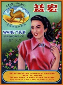 Unknown - Wang Yick Fireworks