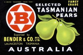 Unknown - Bender & Co. Selected Tasmanian Pears