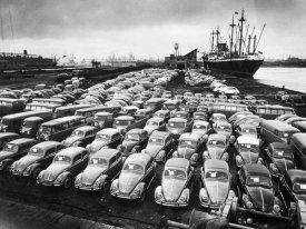 Hans Marx - First Shipment of Beetles to America, 1956