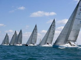 Sharon Green - Racing sailboats in a row