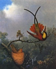 Martin Johnson Heade - Crimson Topaz