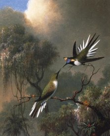 Martin Johnson Heade - Two Sun Gems On A Branch