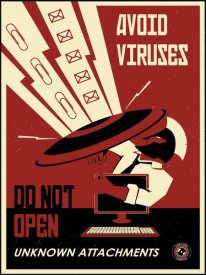 Steve Thomas - Avoid Viruses