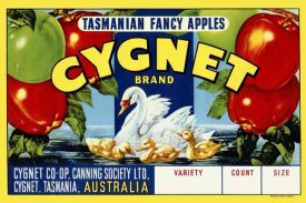 Retrolabel - Cygnet Tasmanian Fancy Apples