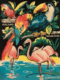 Retrotravel - Tropical Hobbyland - Birds