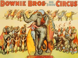 Anonymous - Downie Bros. Big 3 Ring Circus, 1935