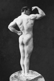 Vintage Muscle Men - Statuesque Back and Arm Curl