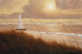 Diane Romanello - Beach Grass Sunset