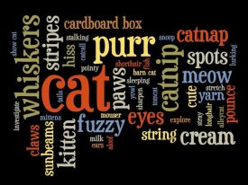 BG.Studio - Cat Words 2