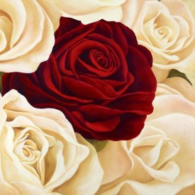 Serena Biffi - Rose Composition II