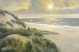 Diane Romanello - Morning Meditation