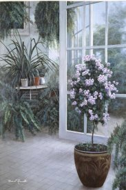 Diane Romanello - Patio Light