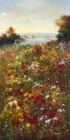 Arcobaleno - Wildflower Meadow I