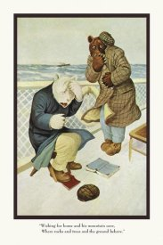 R.K. Culver - Teddy Roosevelt's Bears: Teddy B and Teddy G Are Seasick