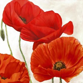 Luca Villa - Poppies II