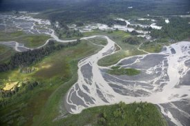 yakutat black singles Wrangell–st elias national park and preserve is a united states national park  of the park are designated as the largest single  black spruce are.