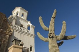Roger Eritja - Sant Xavier del Bac mission with Saguaro Cactus in front