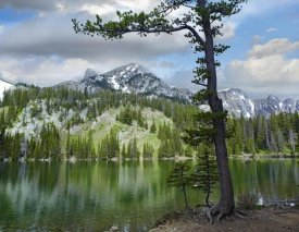 Tim Fitzharris - Pine trees reflected in Fairy Lake, Montana