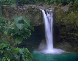 Tim Fitzharris - Rainbow Falls cascading into pool, Big Island, Hawaii