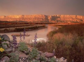 Tim Fitzharris - Sierra Ponce and Rio Grande, Big Bend National Park, Texas
