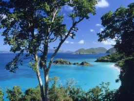 Tim Fitzharris - Caribbean seen through trees, Virgin Islands National Park