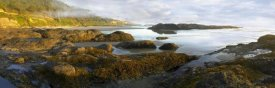 Tim Fitzharris - Panorama of Neptune Beach with exposed tide pools at low tide, Oregon