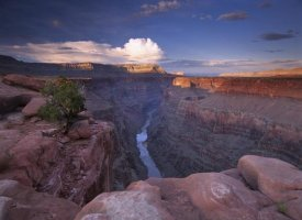 Tim Fitzharris - Colorado River from Toroweap Overlook, Grand Canyon National Park, Arizona