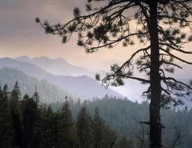 Tim Fitzharris - View over foothills to the west from Kings Canyon National Park, California