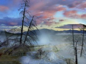 Tim Fitzharris - Steam rising from travertine formations, Minerva Terrace, Mammoth Hot Springs, Yellowstone National Park, Wyoming