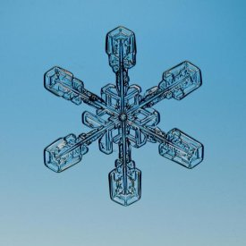 Steve Gettle - Snowflake seen through microscope