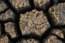Vincent Grafhorst - Cracked, dried out mud, Mokolodi Nature Reserve, Botswana