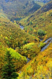 Scott Leslie - MacKenzie River valley, Cape Breton Highlands National Park, Nova Scotia, Canada