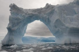Flip Nicklin - Iceberg with a natural arch, Antarctic Peninsula, Antarctica