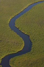 Pete Oxford - Papyrus swamps and channel, aerial view, Africa