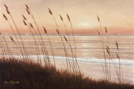 Diane Romanello - Breezy Sunset