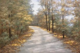 Diane Romanello - Walking in Fall