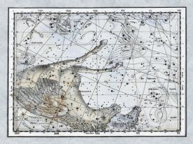 Alexander Jamieson - Maps of the Heavens: Pegasus the Horse