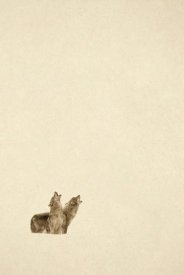 Tim Fitzharris - Timber Wolf pair howling in snow, North America - Sepia